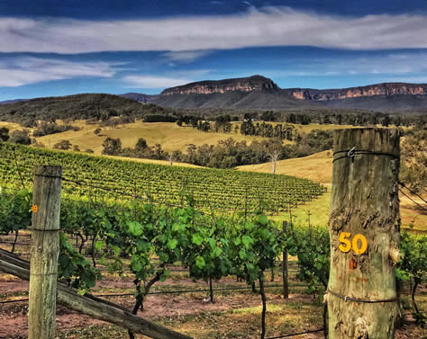 Wineries with unbelievable views