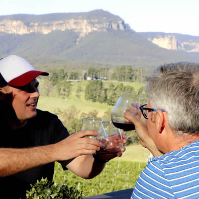 blue mountains wines